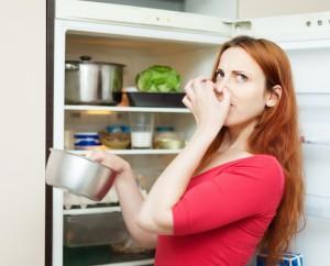 My Refrigerator Smells