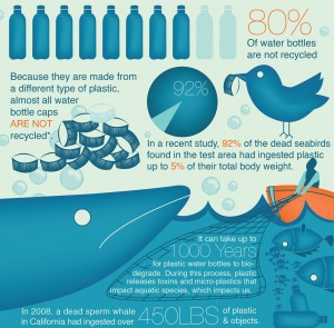 FridgeFilters.com Infographic - Real Cost of Plastic Water Bottles