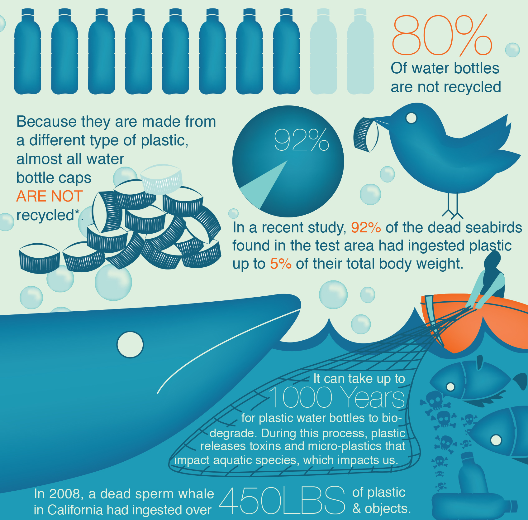 Infographic Break Your Plastic Water Bottle Habit
